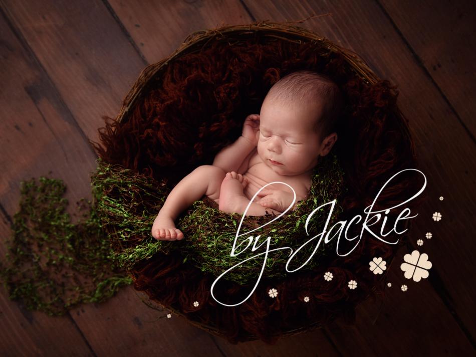 link to newborn portfolio
